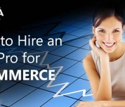 SEO Pro for Ecommerce
